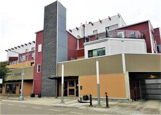 Photo 7: 202B 11633 105 Avenue NW in Edmonton: Zone 08 Condo for sale : MLS®# E4167151