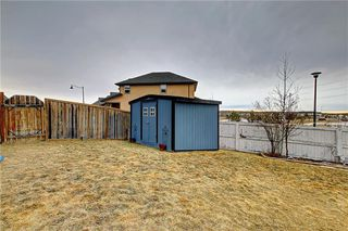 Photo 41: 135 EVANSPARK Terrace NW in Calgary: Evanston Detached for sale : MLS®# C4293070