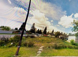 Photo 4: 2039 44 Street SE in Calgary: Forest Lawn Land for sale : MLS®# A1009956