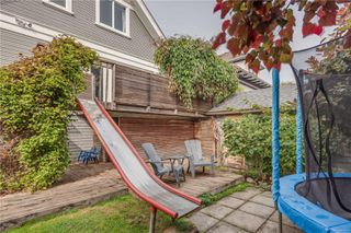 Photo 49: 319 Vancouver St in : Vi Fairfield West House for sale (Victoria)  : MLS®# 855892