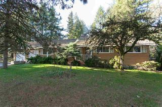 "Photo 5: 9671 161A Street in Surrey: Fleetwood Tynehead House for sale in ""TYNEHEAD AREA"" : MLS®# R2504077"