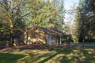 "Photo 6: 9671 161A Street in Surrey: Fleetwood Tynehead House for sale in ""TYNEHEAD AREA"" : MLS®# R2504077"
