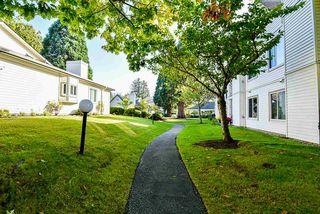 Photo 28: 8 12940 17 AVENUE in Surrey: Crescent Bch Ocean Pk. Townhouse for sale (South Surrey White Rock)  : MLS®# R2506956