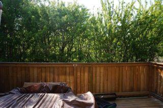 Photo 27: 10316 136 Street in Edmonton: Zone 11 House for sale : MLS®# E4169790