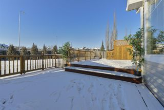Photo 39: 3553 MCLAY Crescent in Edmonton: Zone 14 House for sale : MLS®# E4181984