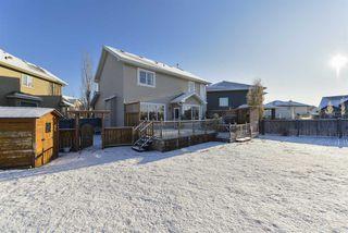 Photo 43: 3553 MCLAY Crescent in Edmonton: Zone 14 House for sale : MLS®# E4181984