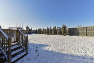 Photo 38: 3553 MCLAY Crescent in Edmonton: Zone 14 House for sale : MLS®# E4181984