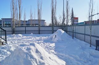 Photo 46: 4 HAWTHORNE Gate: Spruce Grove House for sale : MLS®# E4188881