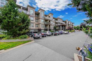 "Main Photo: 302 30515 CARDINAL Avenue in Abbotsford: Abbotsford West Condo for sale in ""TAMARIND WESTSIDE"" : MLS®# R2469663"