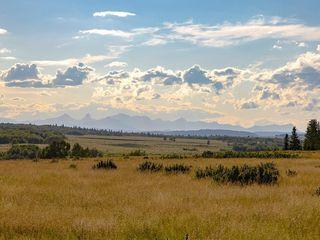 Photo 33: 116 HEARTLAND Way: Cochrane Detached for sale : MLS®# C4305625