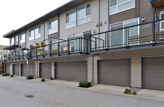 Photo 20: 37 16223 23A Avenue in Surrey: Grandview Surrey Townhouse for sale (South Surrey White Rock)  : MLS®# R2411180