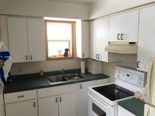 Photo 8: 99 Oak Street in Pictou: 107-Trenton,Westville,Pictou Residential for sale (Northern Region)  : MLS®# 201926673