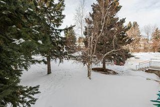 Photo 30: 219 5730 RIVERBEND Road in Edmonton: Zone 14 Condo for sale : MLS®# E4188491
