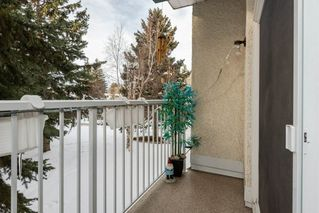 Photo 22: 219 5730 RIVERBEND Road in Edmonton: Zone 14 Condo for sale : MLS®# E4188491