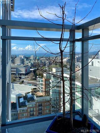 Photo 5: 1906 751 Fairfield Rd in VICTORIA: Vi Downtown Condo for sale (Victoria)  : MLS®# 834515