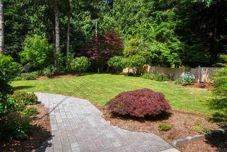 Photo 24: 696 CONRAD Road: Roberts Creek House for sale (Sunshine Coast)  : MLS®# R2478128