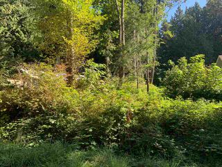 """Photo 2: Lot 2 FEENEY Road in Gibsons: Gibsons & Area Land for sale in """"Soames Point"""" (Sunshine Coast)  : MLS®# R2494083"""