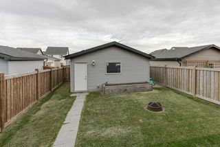 Photo 50: 17653 60A Street in Edmonton: Zone 03 House for sale : MLS®# E4217440