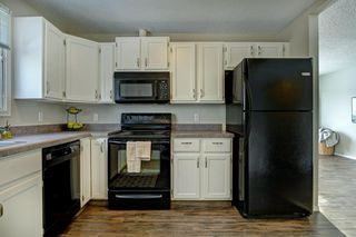 Photo 10: 66 Elk Hill SE: Airdrie Detached for sale : MLS®# A1049036