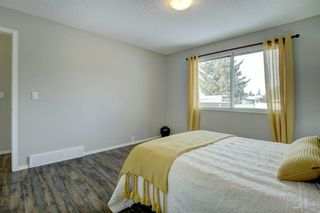 Photo 15: 66 Elk Hill SE: Airdrie Detached for sale : MLS®# A1049036