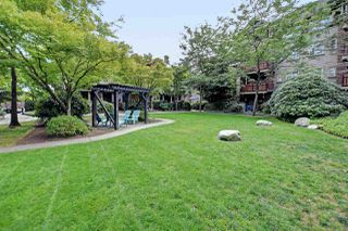 """Photo 18: 245 15 SIXTH Avenue in New Westminster: GlenBrooke North Townhouse for sale in """"Crofton"""" : MLS®# R2396970"""