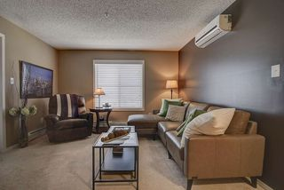 Photo 3: 317 270 MCCONACHIE Drive in Edmonton: Zone 03 Condo for sale : MLS®# E4192443