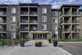 Photo 21: 317 270 MCCONACHIE Drive in Edmonton: Zone 03 Condo for sale : MLS®# E4192443