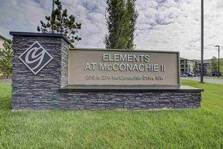 Photo 23: 317 270 MCCONACHIE Drive in Edmonton: Zone 03 Condo for sale : MLS®# E4192443