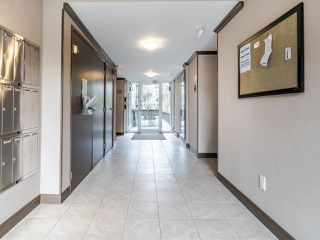 """Photo 3: 213 555 W 14TH Avenue in Vancouver: Fairview VW Condo for sale in """"Cambridge Place"""" (Vancouver West)  : MLS®# R2448193"""