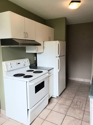 Photo 10: 101 9116 106 Avenue in Edmonton: Zone 13 Condo for sale : MLS®# E4201276