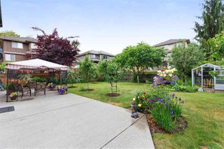 Photo 19: 20915 GOLF Lane in Maple Ridge: Southwest Maple Ridge House for sale : MLS®# R2487359