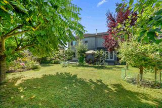 Photo 20: 20915 GOLF Lane in Maple Ridge: Southwest Maple Ridge House for sale : MLS®# R2487359