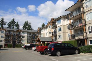 Photo 20: 414 2990 Boulder Street in : Abbotsford West Condo for sale (Abbotsford)  : MLS®# R2487974