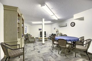 Photo 23: 3225 6818 Pinecliff Grove NE in Calgary: Pineridge Apartment for sale : MLS®# A1053438