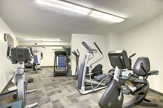 Photo 28: 3225 6818 Pinecliff Grove NE in Calgary: Pineridge Apartment for sale : MLS®# A1053438