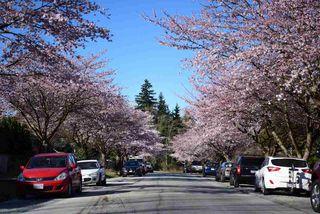Photo 20: 7040 MALIBU Drive in Burnaby: Westridge BN House for sale (Burnaby North)  : MLS®# R2388500