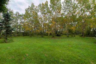 Photo 29: 49212 Range Road 252: Rural Leduc County House for sale : MLS®# E4174491