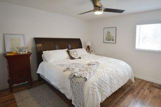 Photo 18: 8 DUMONT Court: St. Albert House for sale : MLS®# E4180801