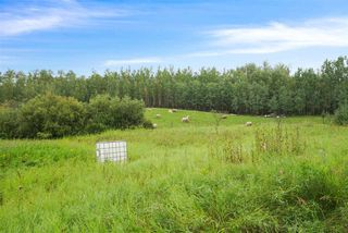 Photo 1: 175 52550 Rge Rd 222: Rural Strathcona County Rural Land/Vacant Lot for sale : MLS®# E4198854