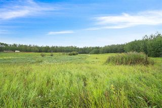 Photo 5: 175 52550 Rge Rd 222: Rural Strathcona County Rural Land/Vacant Lot for sale : MLS®# E4198854