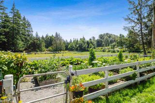 Photo 29: 21113 16 Avenue in Langley: Campbell Valley Agri-Business for sale : MLS®# C8033266