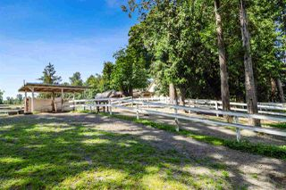 Photo 21: 21113 16 Avenue in Langley: Campbell Valley Agri-Business for sale : MLS®# C8033266