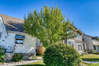 Photo 3: 426 29 Avenue NW in Calgary: Mount Pleasant Detached for sale : MLS®# A1032376
