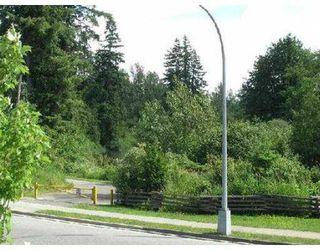 Photo 5: 23537 KANAKA WY in Maple Ridge: Cottonwood MR House for sale : MLS®# V542001