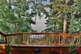Photo 20: 81 Poplar Bay: Rural Wetaskiwin County House for sale : MLS®# E4185181