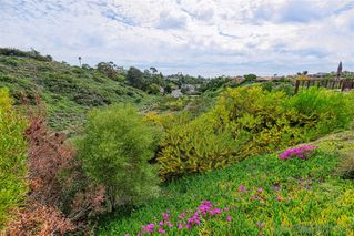 Photo 17: SAN DIEGO House for sale : 4 bedrooms : 1677 Calle Alta in La Jolla