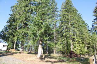 Photo 37: 3306 MACAULAY Rd in : CV Merville Black Creek Single Family Detached for sale (Comox Valley)  : MLS®# 851634