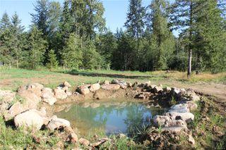 Photo 41: 3306 MACAULAY Rd in : CV Merville Black Creek Single Family Detached for sale (Comox Valley)  : MLS®# 851634