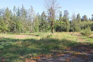 Photo 38: 3306 MACAULAY Rd in : CV Merville Black Creek Single Family Detached for sale (Comox Valley)  : MLS®# 851634