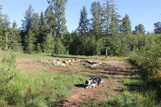 Photo 39: 3306 MACAULAY Rd in : CV Merville Black Creek Single Family Detached for sale (Comox Valley)  : MLS®# 851634